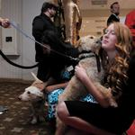 Katie gets love from an adoptable pup during a function.