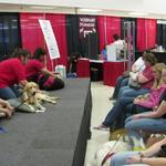 Genete M. Bowen gives pet massage instruction during the Animal Planet Expo in Atlanta, GA. (April 2009)