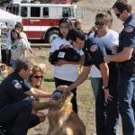Firefighters learn Animal Triage during a demonstration given by Genete M. Bowen.