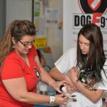 Genete & Jr Vet Tyler Krieder use Chloe to demo how to check a dog's vital signs.